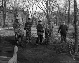 Émondage au square Viger, 25 mars 1961. Archives de Montréal, VM94-Z1434-2.