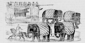Hippozoonomadon, La Minerve, 16 août 1862. BAnQ.